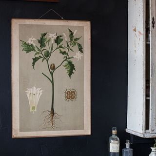 WALL botanical poster-1
